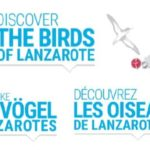 The Birds of Lanzarote (aves, vögel, oiseaux)