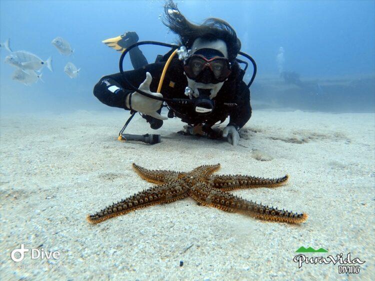 Descubre los fondos submarinos de Lanzarote